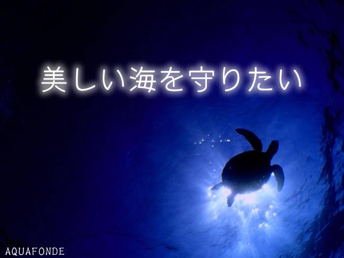 美しい海を守りたいimg
